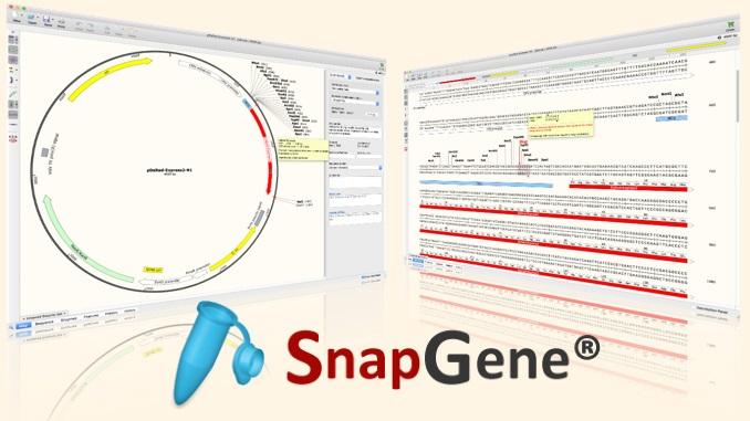 SnapGene 5.2.1 Crack + License Key Full Latest Version
